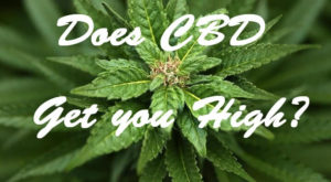Does CBD Get you High